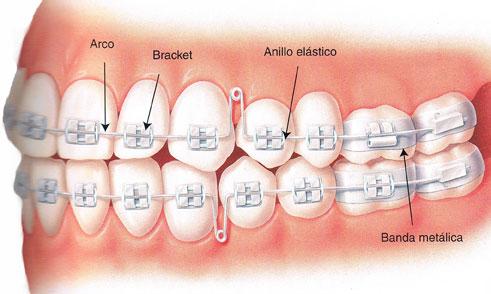 Clinica ortodoncia jaen